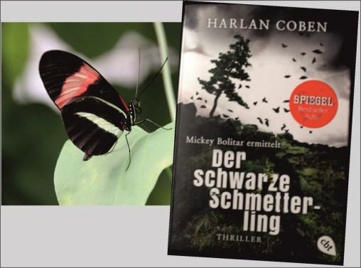 Der schwarze Schmetterling.IIcdr (Kopie)