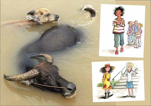 Wasserbüffel.IIcdr (Kopie)