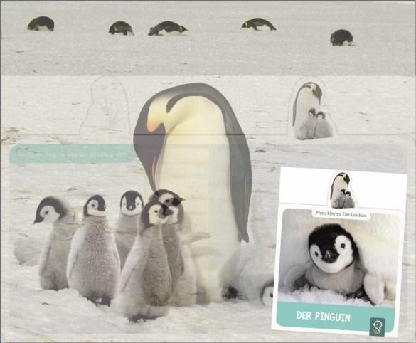 Pinguin II (Kopie)