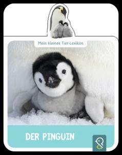 RZ_Tiere_Pinguin (Kopie).tif