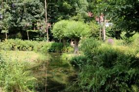 """Kulturtipp: """"SinnesWald"""" in Leichlingen"""
